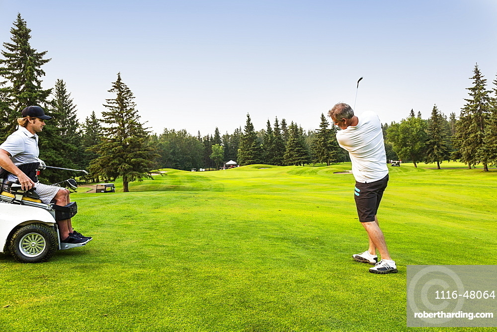 A male golfer drives a golf ball down the green with a wedge on a golf course while a disabled golfer in a specialized wheelchair watches, Edmonton, Alberta, Canada