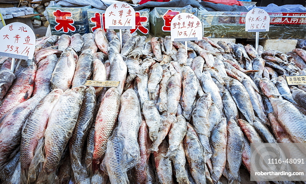 Fish for sale in a street market, Datong, China