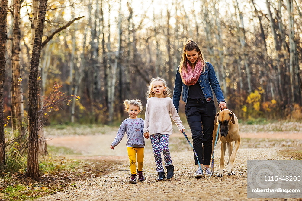 A young mom and her daughters walking their Great Dane in a park on a warm autumn evening, Edmonton, Alberta, Canada