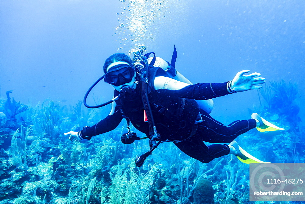Scuba diver in the East Wall dive site, Belize Barrier Reef, Belize