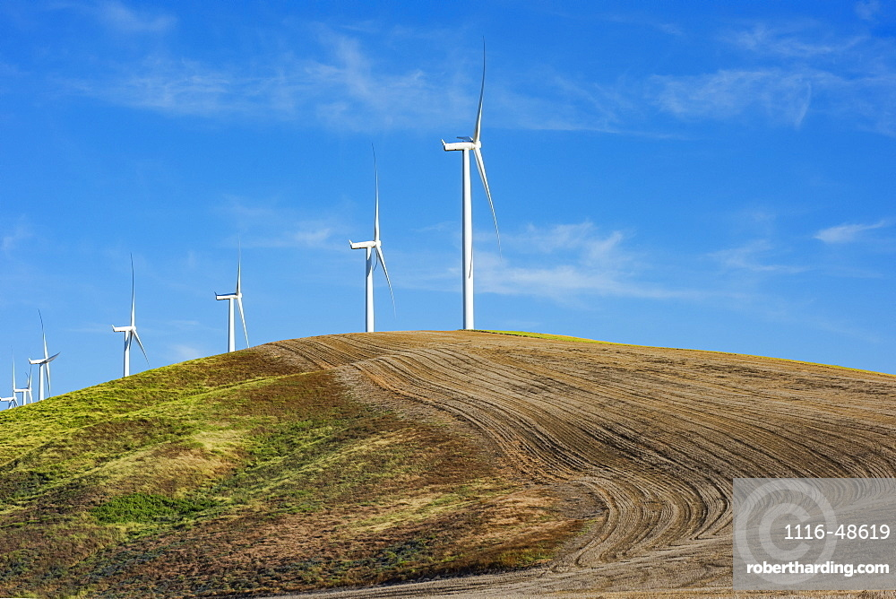 Wind farm wind turbines on a farmer's ploughed field combining green energy with agriculture, Eastern Washington, Dayton, Washington, United States of America