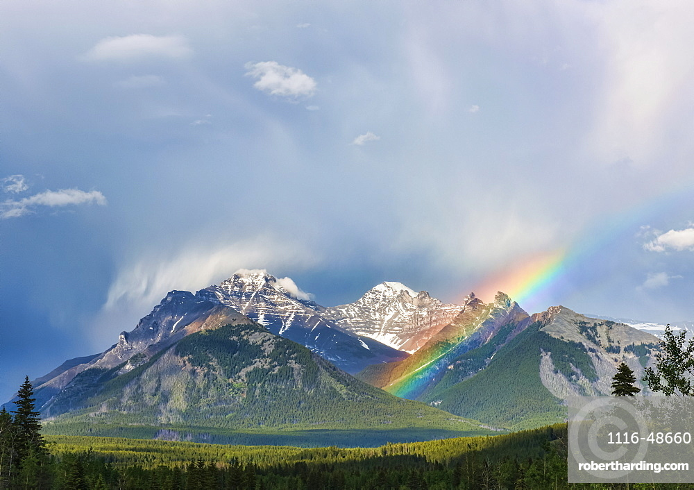 A rainbow emerges between rugged mountain peaks during a heavy rain storm, Banff, Alberta, Canada