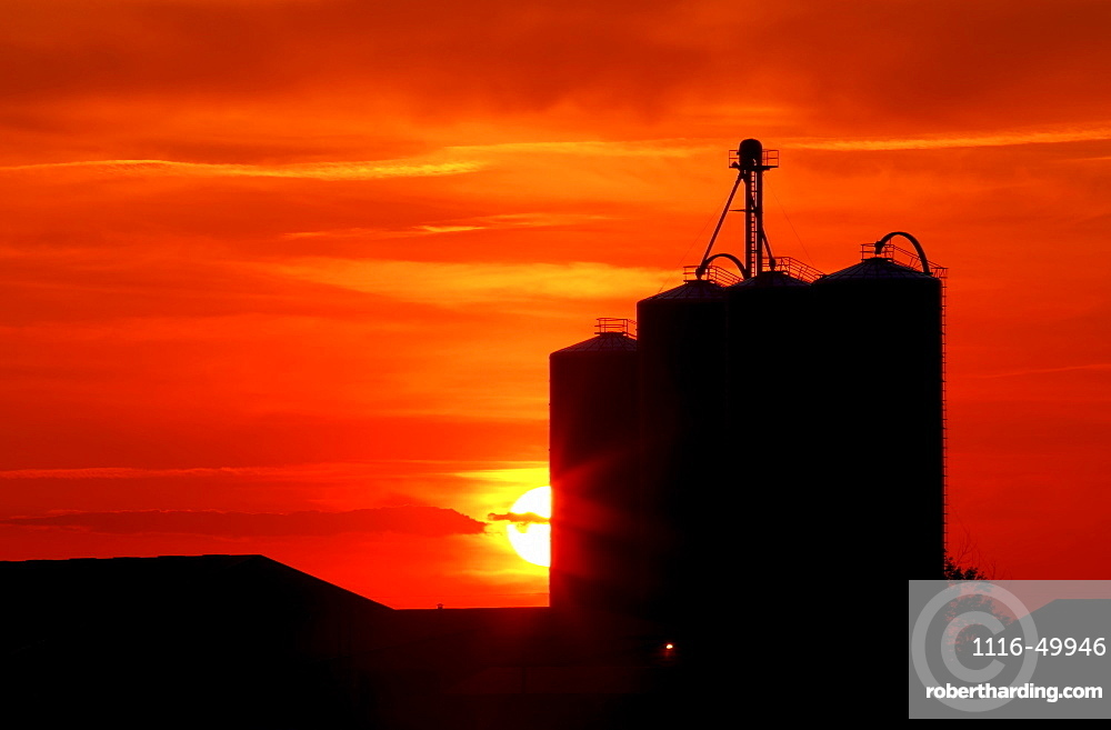 Agriculture - Silhouetted grain elevators at sunset / Alberta, Canada.