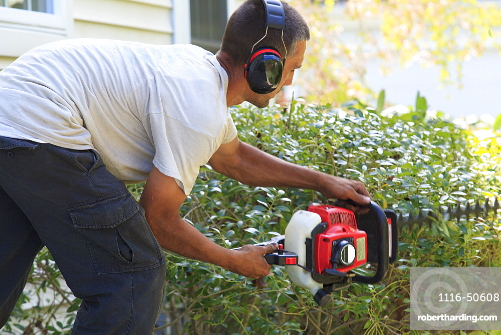 Landscaper trimming bushes with an electric trimmer