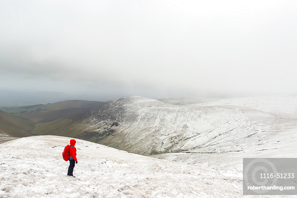 Female hiker in red jacket hiking on a snow-covered mountain in winter in bad weather, Galty Mountains; County Tipperary, Ireland