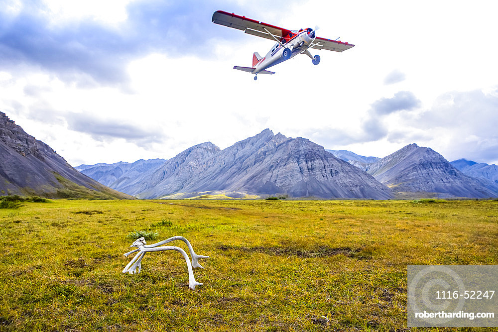 Dehavilland Beaver taking off from tundra bush airstrip in late summer, with a caribou rack marking the end of the runway, Brooks Range, Upper Marsh Fork Valley, Arctic National Wildlife Refuge; Alaska, United States of America
