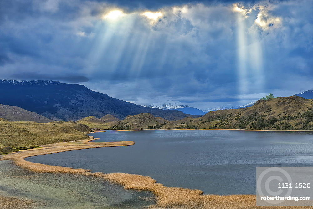Laguna with marsh grass, Patagonia National Park, Chacabuco valley near Cochrane, Aysen Region, Patagonia, Chile