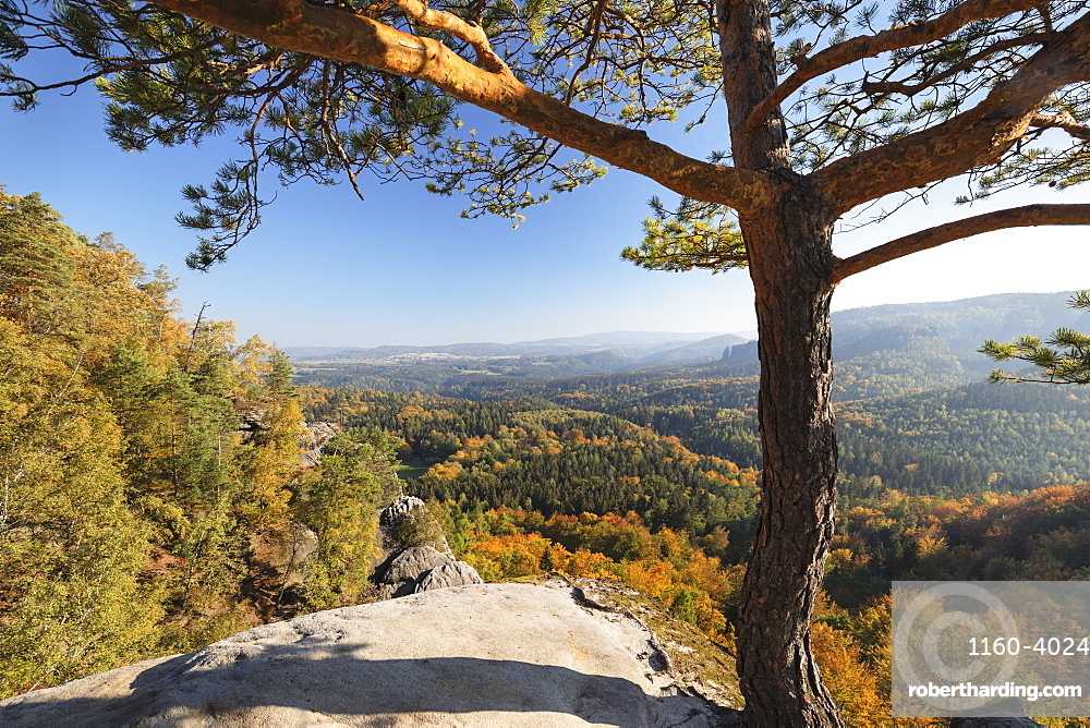 View from Schrammsteine rocks to Hohe Liebe mountain in Elbe Sandstone Mountains, Germany, Europe