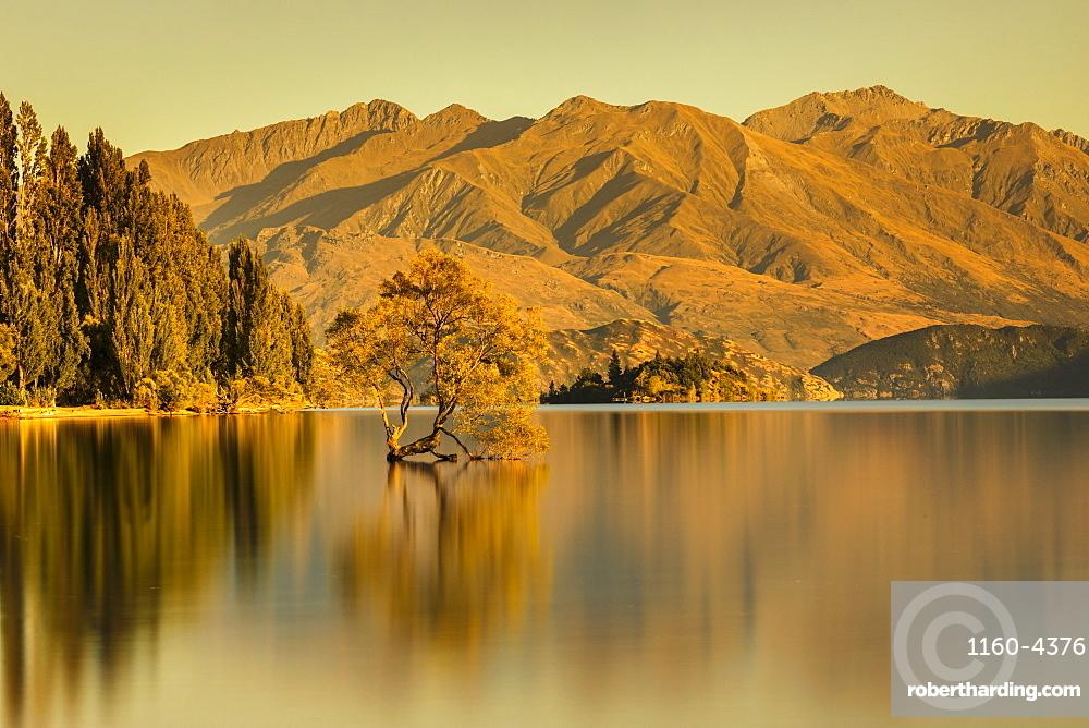 Lake Wanaka at sunrise, Mount-Aspiring National Park, UNESCO World Heritage Site, Otago, South Island, New Zealand, Pacific