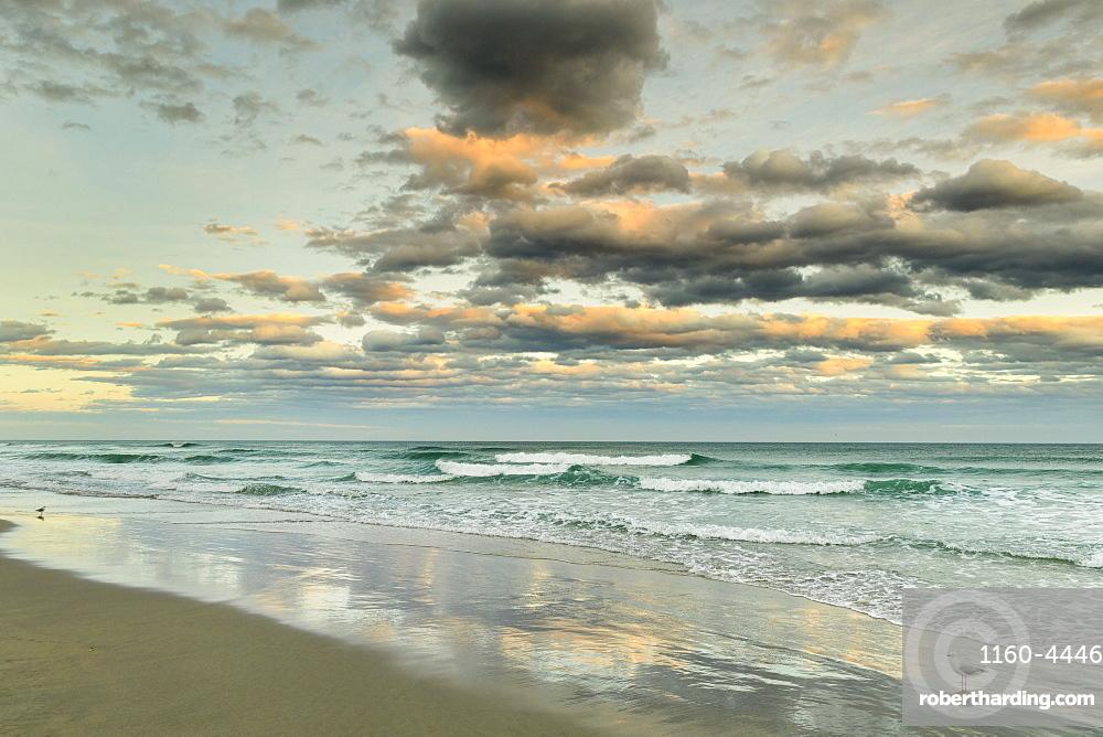 St. Clair Beach at sunset, Dunedin, Otago, South Island, New Zealand, Pacific