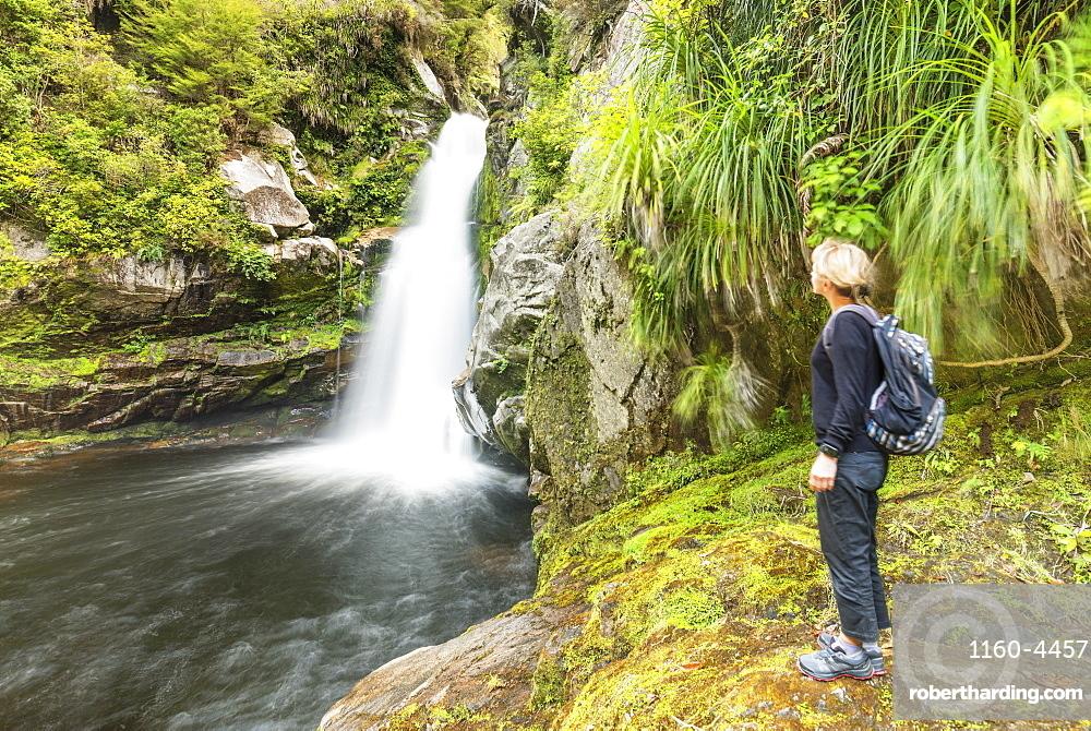 Wainui Falls, Wainui Falls Track, Golden Bay, Tasman, South Island, New Zealand, Pacific