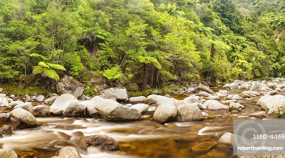Wainui River, Wainui Falls Track, Golden Bay, Tasman, South Island, New Zealand, Pacific