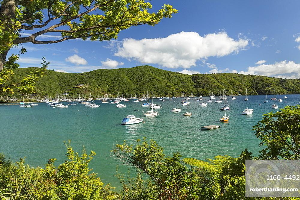 Marina at Waikawa, Picton, Marlborough Sounds, South Island, New Zealand, Pacific