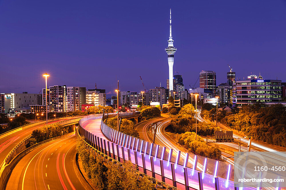 View from Lightpath to Sky Tower, Auckland, North Island, New Zealand, Pacific