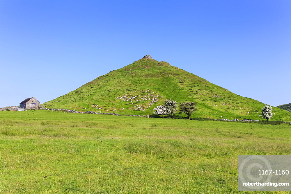 Thorpe Cloud, a conical hill with hawthorns in blossom and barn, Dovedale, Peak District, Derbyshire Staffordshire border, England, United Kingdom, Europe