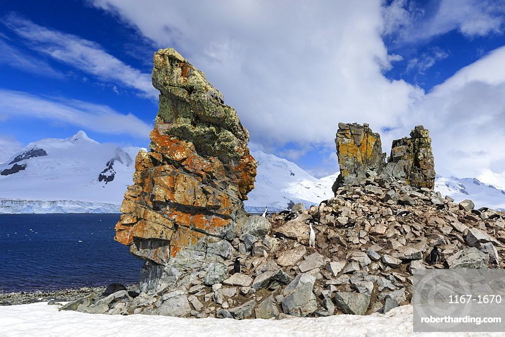 Chinstrap penguins calling (Pygoscelis antarcticus) at a craggy colony, Half Moon Island, South Shetland Islands, Antarctica, Polar Regions