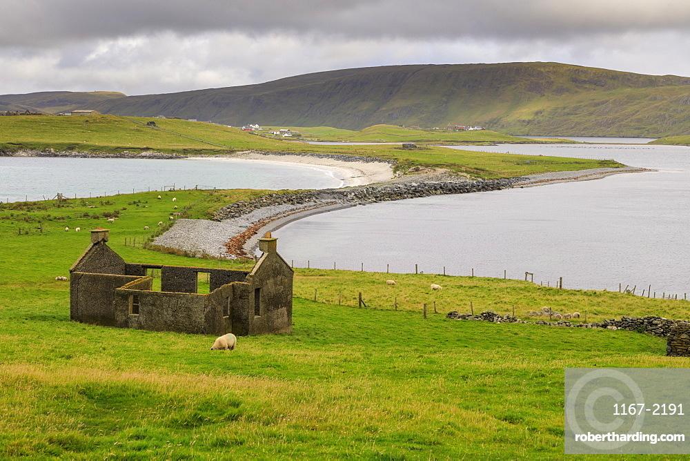 Minn Beach, ruined crofthouse, Banna Minn, tombolo, Papil, West Burra Island, view to East Burra, Shetland Isles, Scotland, United Kingdom, Europe