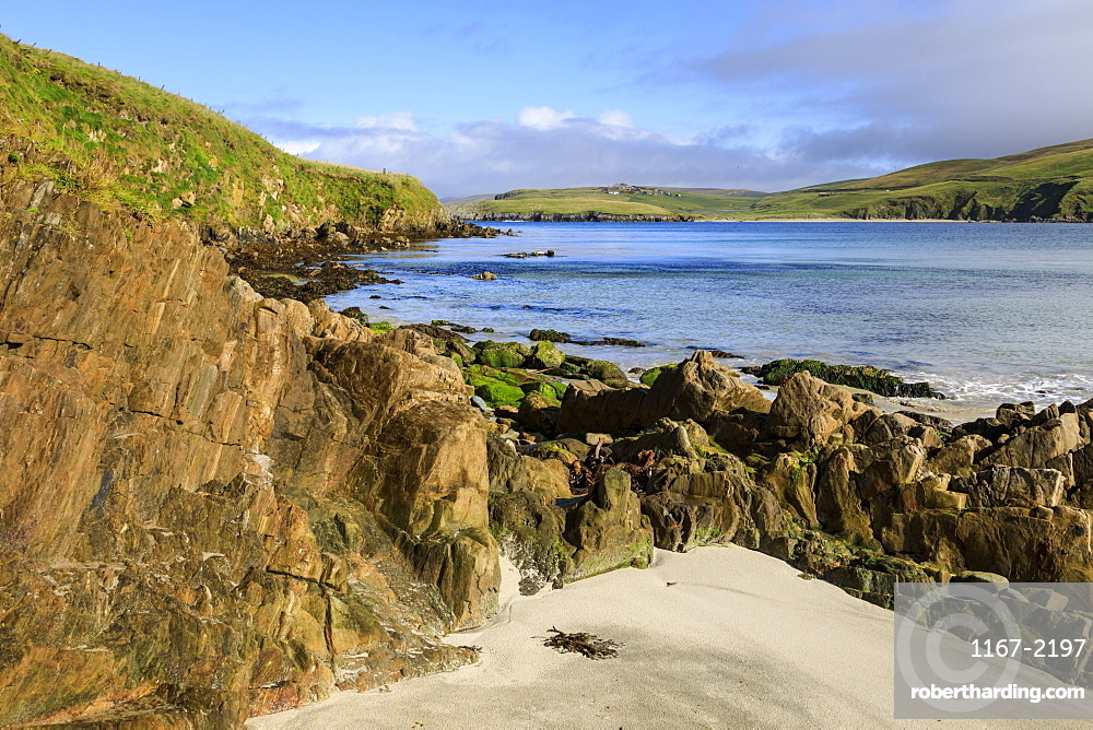 Scousburgh Sands, Spiggie Beach, white sand, turquoise sea, common seals on rocks, South Mainland, Shetland Isles, Scotland