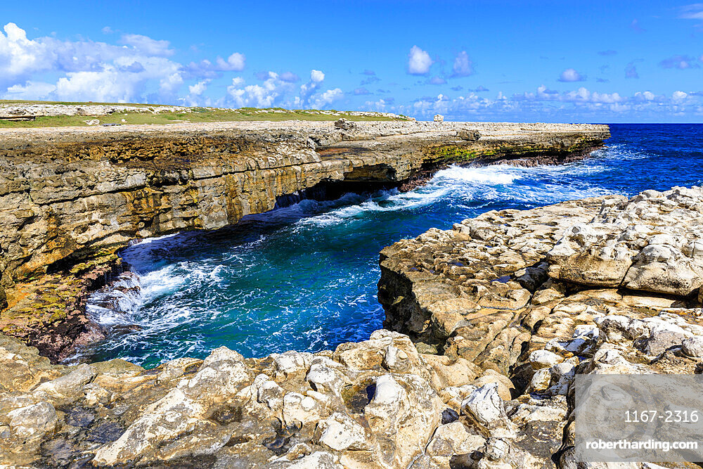 Devil's Bridge, geological limestone rock formation and arch, Willikies, Antigua, Antigua and Barbuda, Leeward Islands, West Indies, Caribbean, Central America