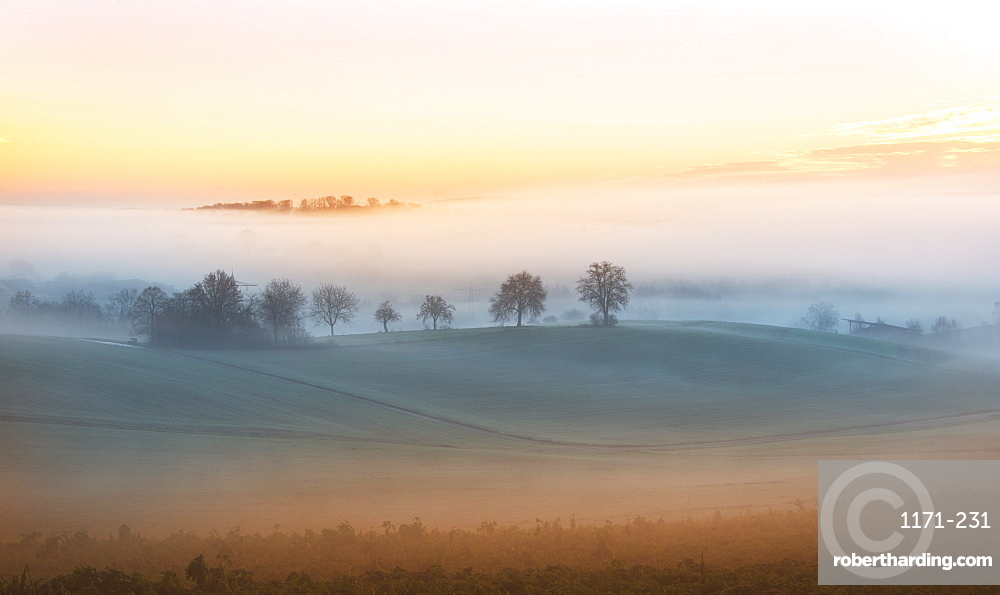 Layers of thick fog wafting across the rolling hills of Kraichgau region shortly after sunrise, Baden-Wurttemberg, Germany, Europe