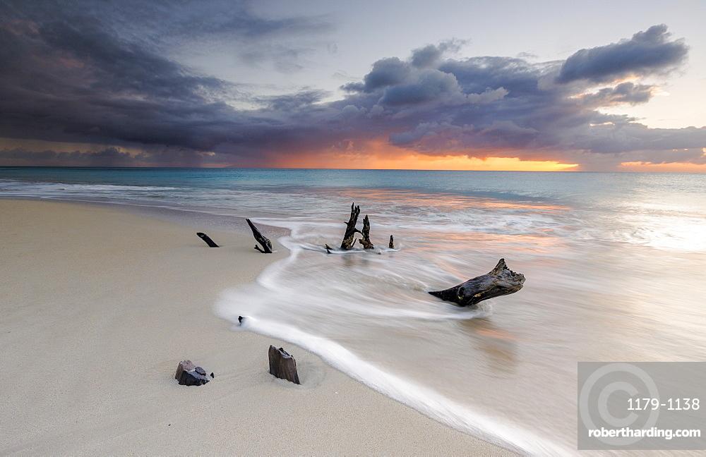 Caribbean sunset frames tree trunks on Ffryes Beach, Antigua, Antigua and Barbuda, Leeward Islands, West Indies, Caribbean, Central America