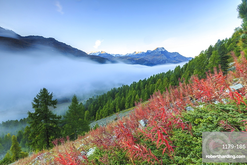 Autumn mist dissolving and revealing the top of Piz la Margna towering over the other peaks of Engadine, near St. Moritz, Graubunden, Switzerland, Europe