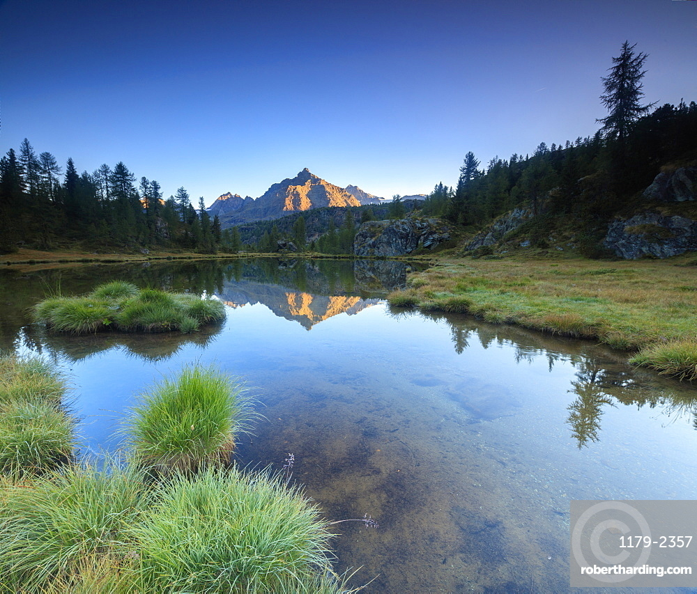 Panorama of Sasso Moro reflected in Lake Mufule at dawn, Malenco Valley, Province of Sondrio, Valtellina, Lombardy, Italy, Europe