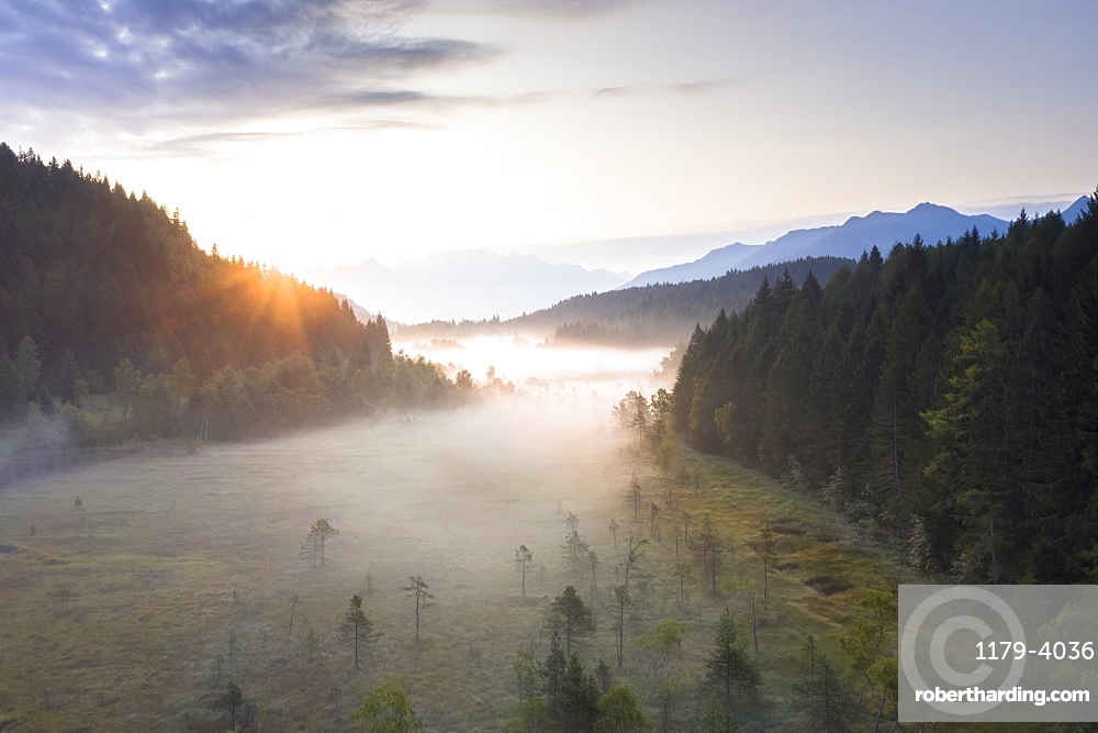 Sun rays at sunrise on fog covering the wetland of Pian di Gembro Reserve, aerial view, Aprica, Valtellina, Lombardy, Italy