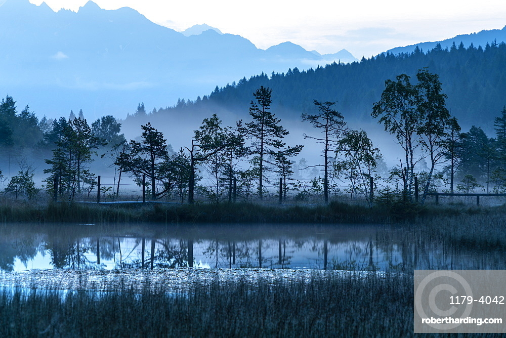 Dusk over trees mirrored in the swamp of Pian di Gembro Nature Reserve, Aprica, Sondrio province, Valtellina, Lombardy, Italy