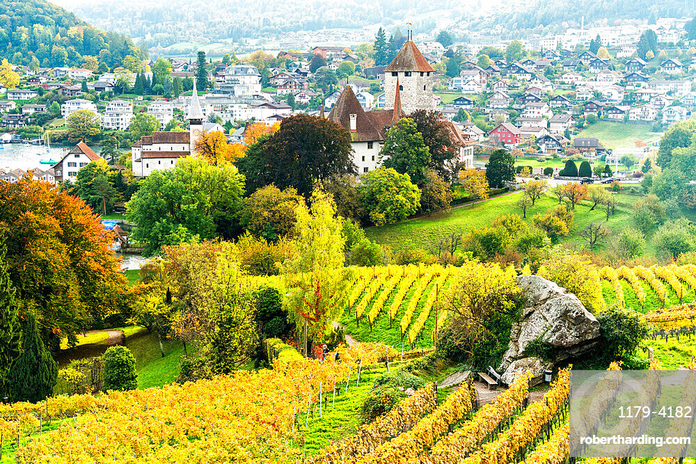Spiez Castle surrounded by vineyards in autumn, Lake Thun, canton of Bern, Switzerland, Europe