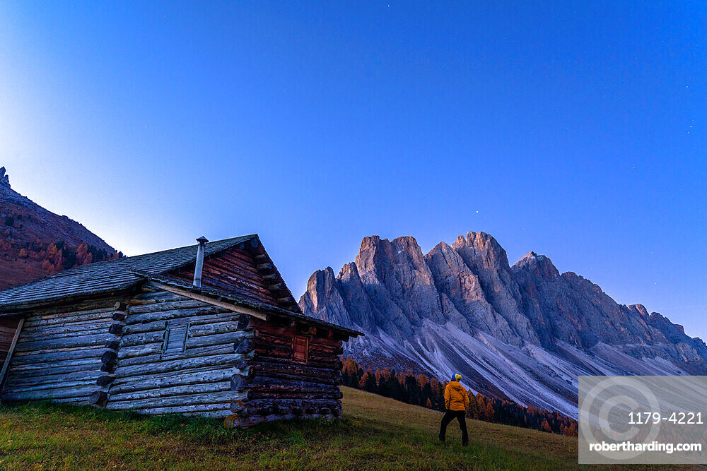 Man outside a hut admiring the Odle at sunrise, Gampen Alm, Funes Valley, Dolomites, Bolzano province, South Tyrol, Italy, Europe
