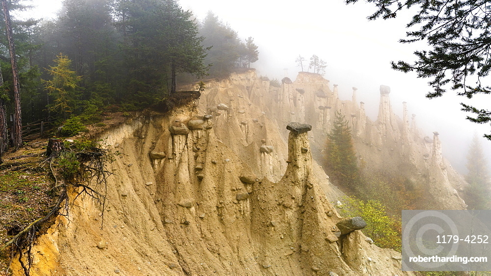 Earth Pyramids and woods in the autumn mist, Perca/Percha, province of Bolzano, South Tyrol, Italy
