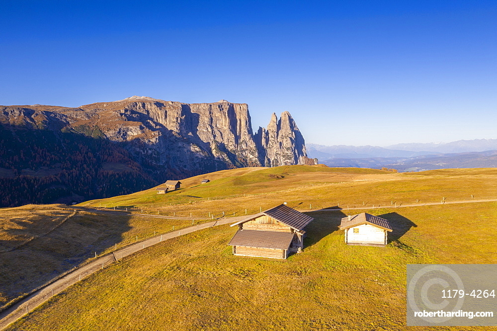 Sunrise on Alpe di Siusi/Seiser Alm and Sciliar peaks in autumn, aerial view, Dolomites, South Tyrol, Italy (drone)