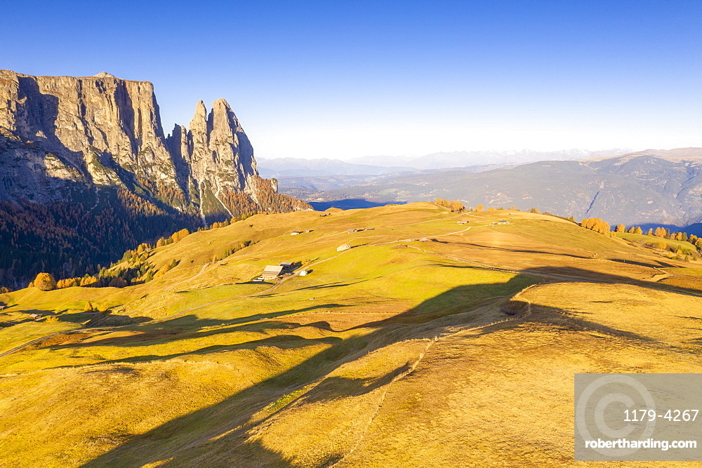 Autumn colors at Alpe di Siusi/Seiser Alm and Sciliar peaks lit by sunrise, aerial view, Dolomites, South Tyrol, Italy (drone)