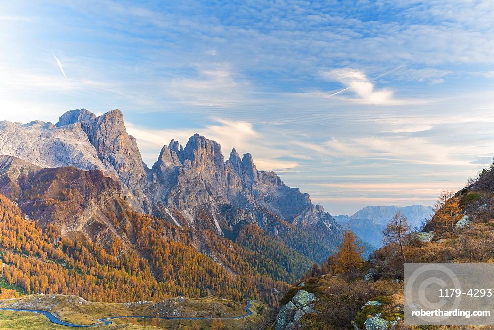 Woods in autumn with Pala di San Martino and Cima Della Rosetta in background, Pale di San Martino, Rolle Pass, Trentino, Italy, Europe