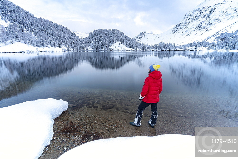 Man standing on shores of Lake Cavloc admiring the snowy woods, Bregaglia Valley, canton of Graubunden, Engadine, Switzerland