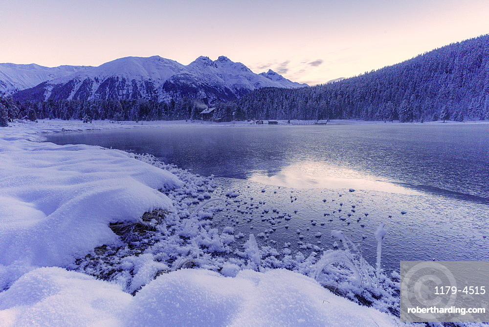 Sunrise over the frozen lake Lej da Staz and snowy woods, St. Moritz, canton of Graubunden, Engadine, Switzerland