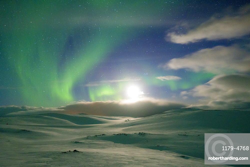 Snowy landscape lit by moon in the starry sky during the Northern Lights (Aurora Borealis), Skarsvag, Nordkapp, Troms og Finnmark, Norway, Scandinavia, Europe