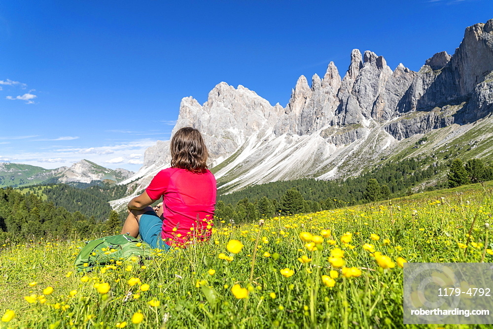 Young woman admiring the Odle peaks sitting on flowering meadows of Malga Brogles, Val di Funes, South Tyrol, Dolomites, Italy