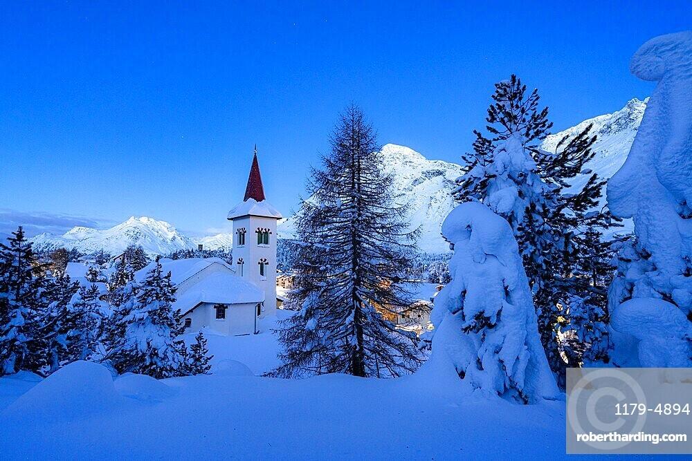 Chiesa Bianca and trees covered with snow at dusk, Maloja, Bregaglia, canton of Graubunden, Engadin, Switzerland