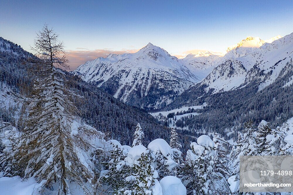 Winter forest covered with snow with peaks of Bregaglia Valley on background, Maloja, Graubunden canton, Engadin, Switzerland