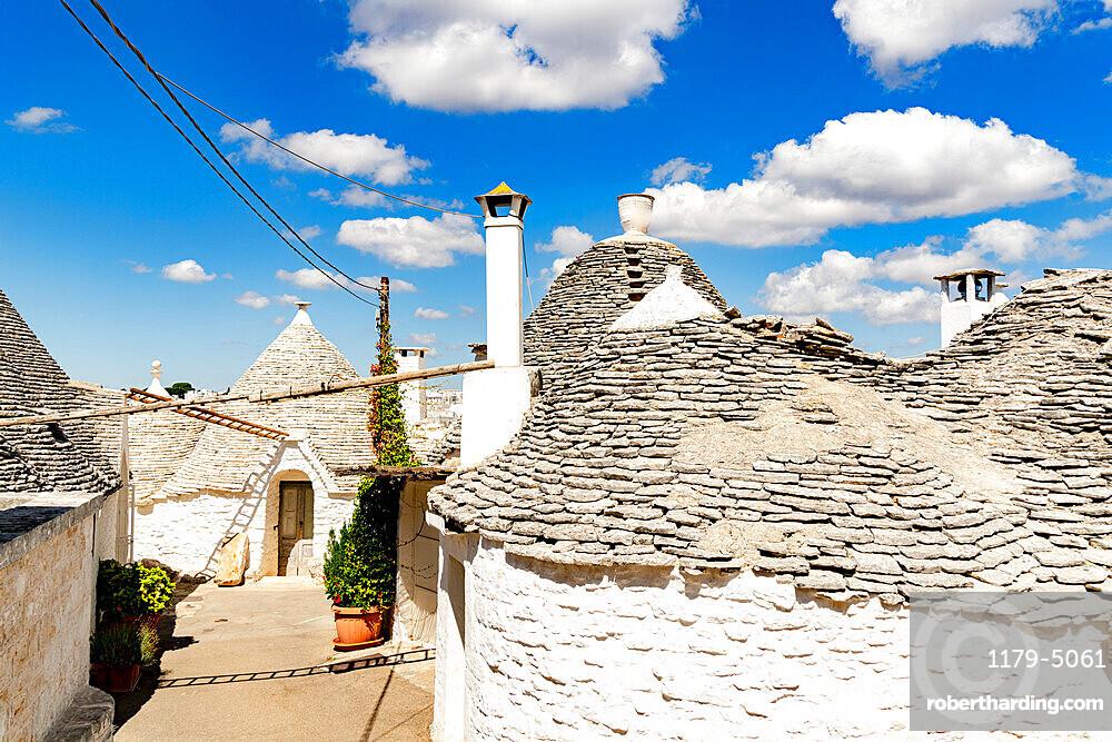 Traditional whitewashed Trulli houses, Alberobello, province of Bari, Apulia, Italy