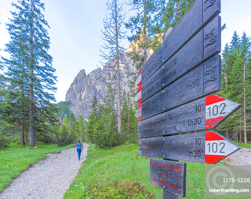 Hiking signage along footpath to Rifugio Zsigmondy Comici hut, Val Fiscalina, Sesto/Sexten Dolomites, South Tyrol, Italy