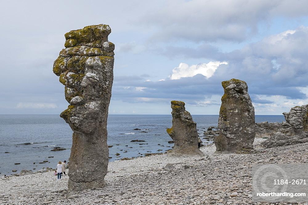 Unique Langhammars sea stacks, Faro, Gotland, Sweden, Scandinavia, Europe