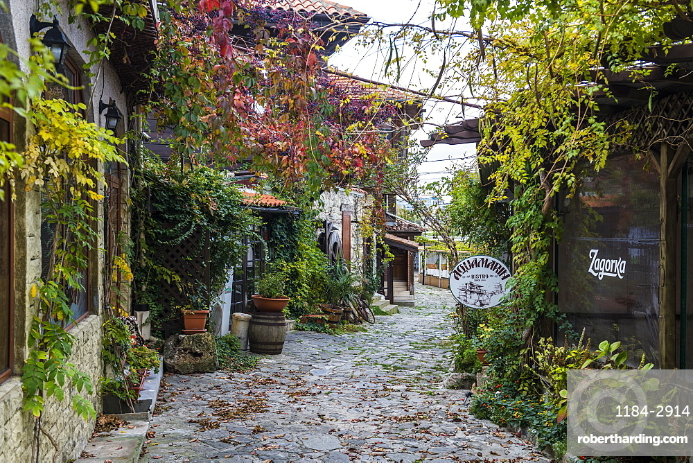 Autumn leaves, Nessebar, UNESCO World Heritage Site, Bulgaria, Europe