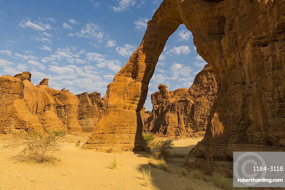 Elephant rock arch, Ennedi Plateau, UNESCO World Heritage Site, Ennedi region, Chad, Africa