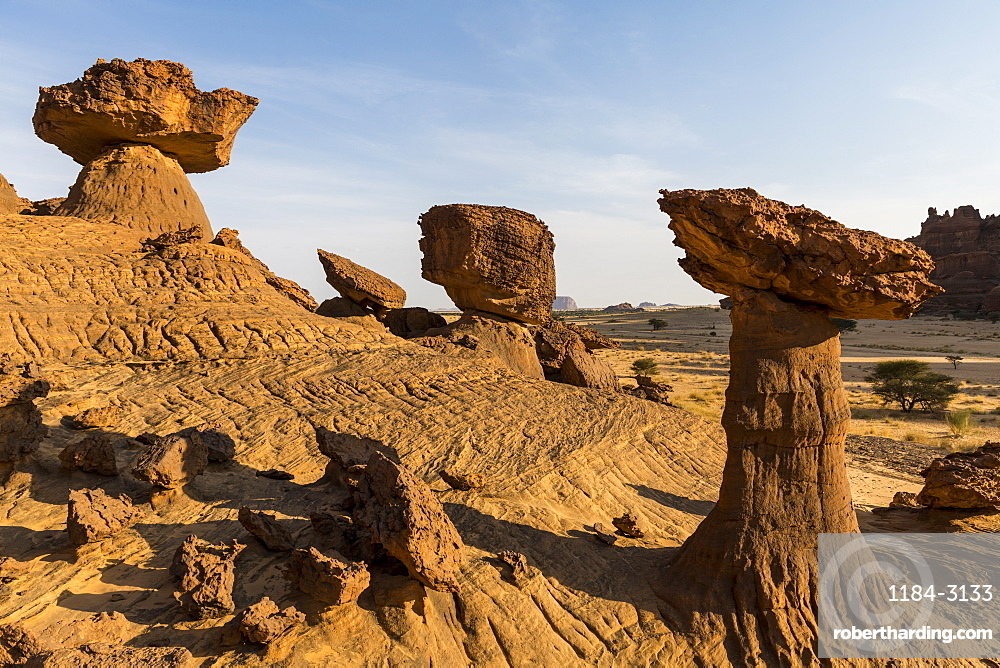 The mushroom rock formations, Ennedi Plateau, UNESCO World Heritage Site, Ennedi region, Chad, Africa