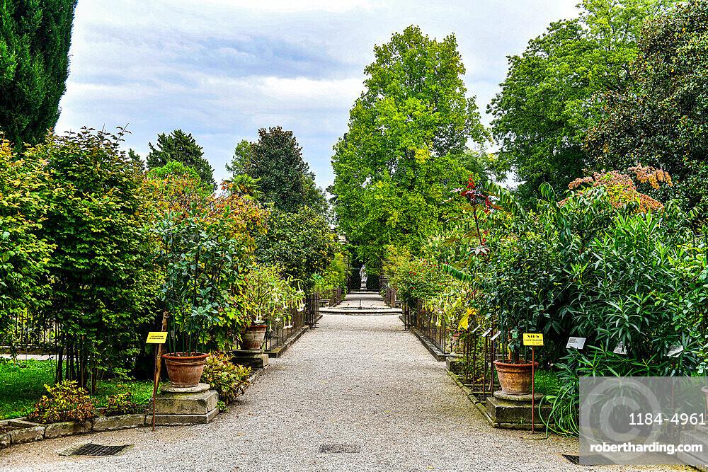 Unesco world site Orto Botanico di Padova, oldest botanical garden, Padua, Italy