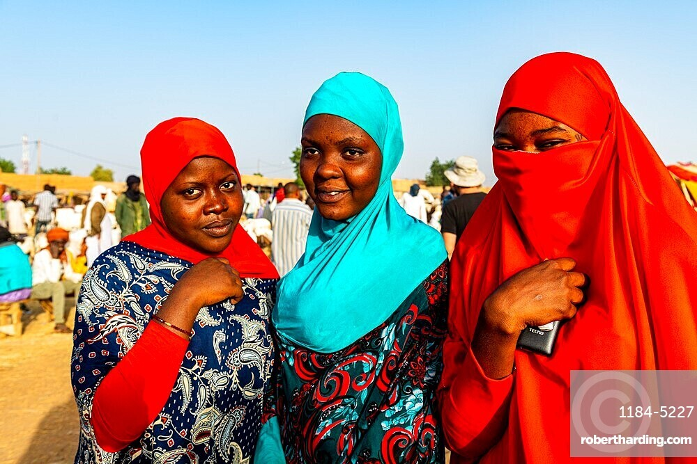 Colourful dressed women at the animal market, Unesco world heritage site Agadez, Niger