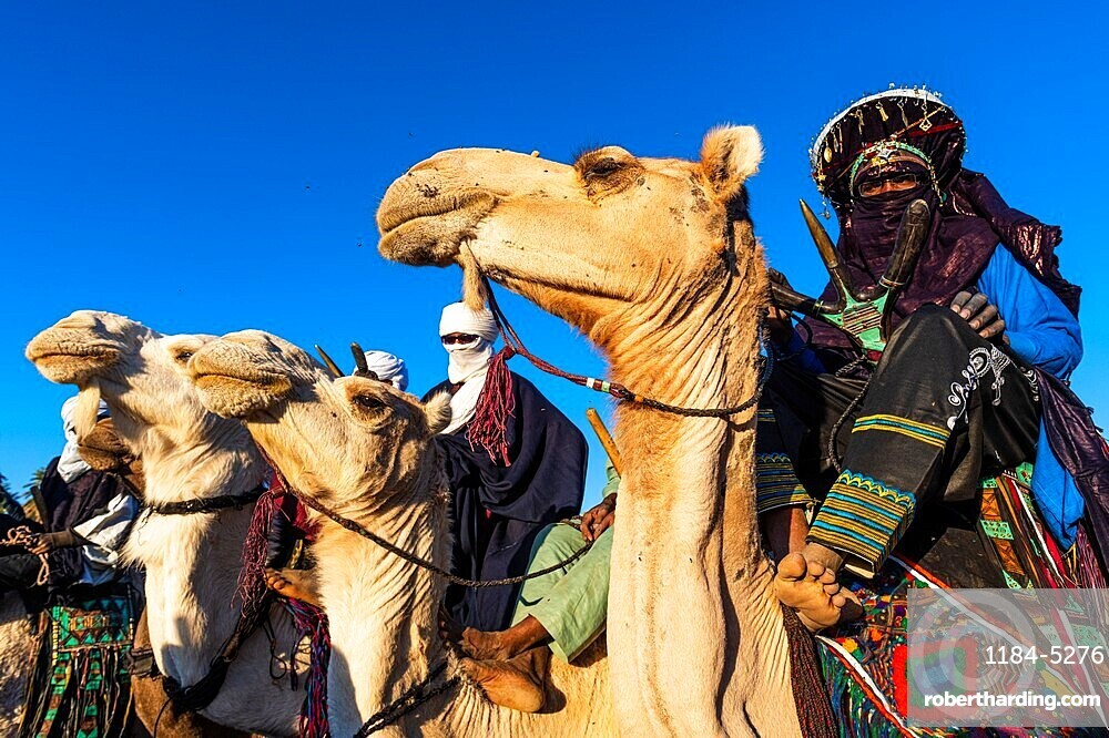 Traditional dressed Tuaregs on their camels, Oasis Timia, Air mountains, Niger